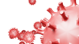 Coronatest Ede: Alles wat je moet weten omtrent het testen